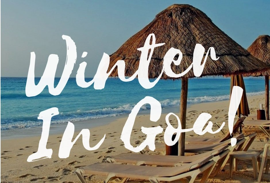 Experience The Best Of Goa This Winter